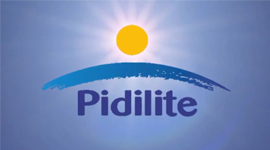 M Seal Plumbing Range Of Products Pidilite