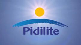 M Seal Plumbing Range Of Products Pidilite